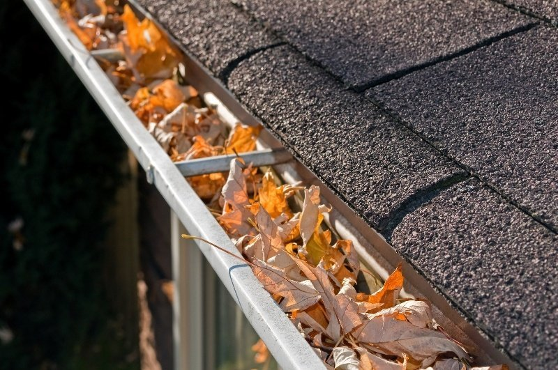 Gutter Cleaning Importance