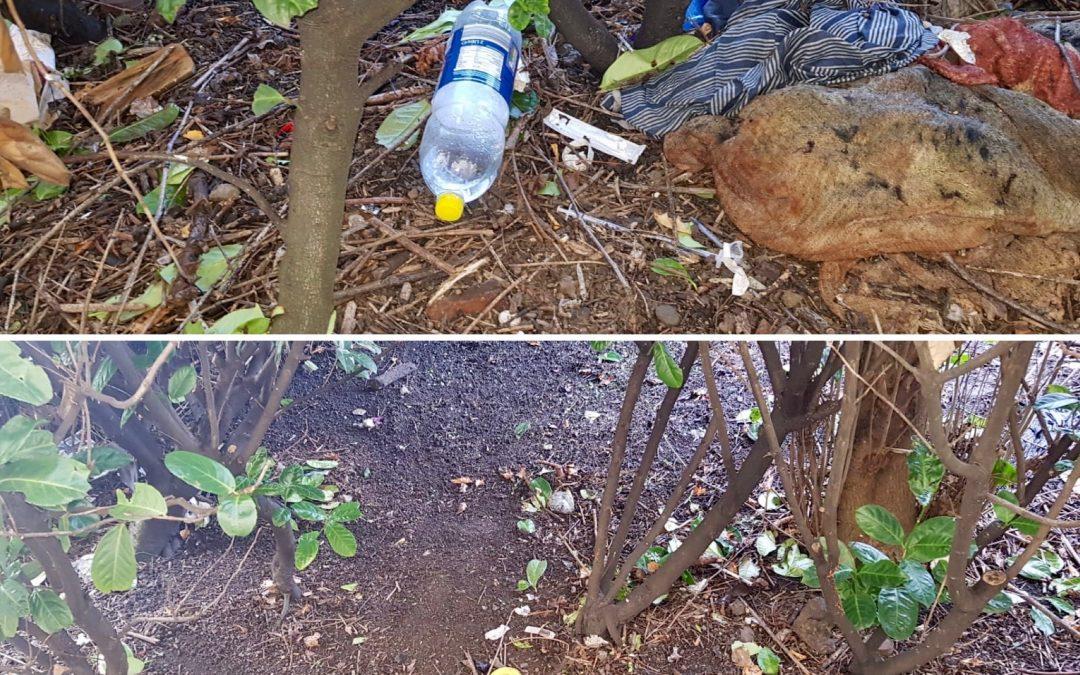 Litter Deep Clean – Before & After