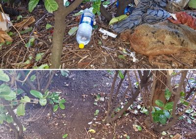 Litter Deep Clean – Before & After