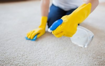 Carpet Cleaning pros vs. do it yourself – which one wins