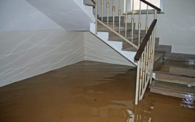 Difference between water mitigation and water extraction